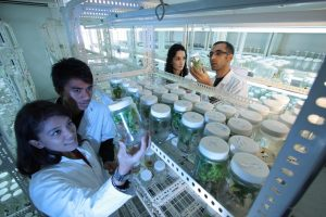 biotechnology industry
