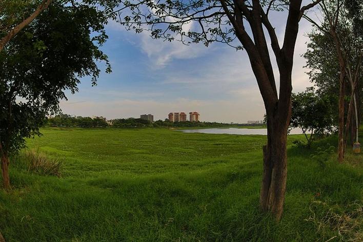 Agara Lake, Lakes in Bangalore