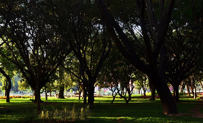 cubbon park, parks in Bangalore