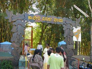 Near Coorg, Nisargadhama Falls, Nisargadhama