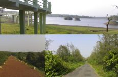 Attiveri Bird Sanctuary