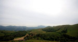 Pushpagiri Wildlife Sanctuary, Coorg Sanctuary