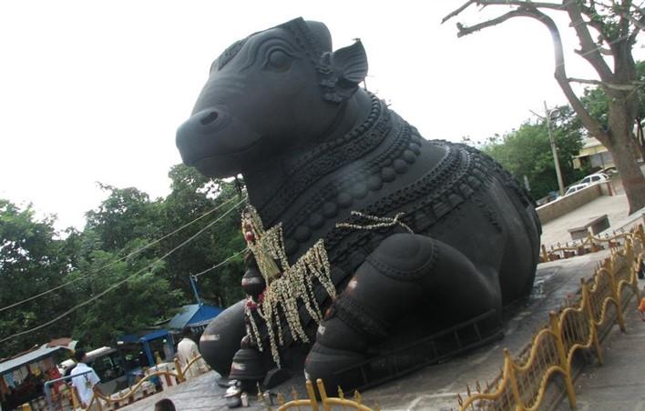 Bull Temple, Bull Temple Bangalore
