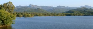 Near Mysore, BR Hills seen from Krishnayyana Katte reservoir. Photographer Prashanth NS