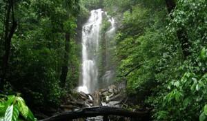 Kollur, Kodachadri Arasinagundi Falls, Kollur
