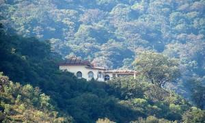 Trekking in Shimoga (Kodachadri) – A Trek Through the Rainforest
