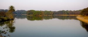 Lalbagh Lake, Bangalore – A Paradise for Nature Lovers
