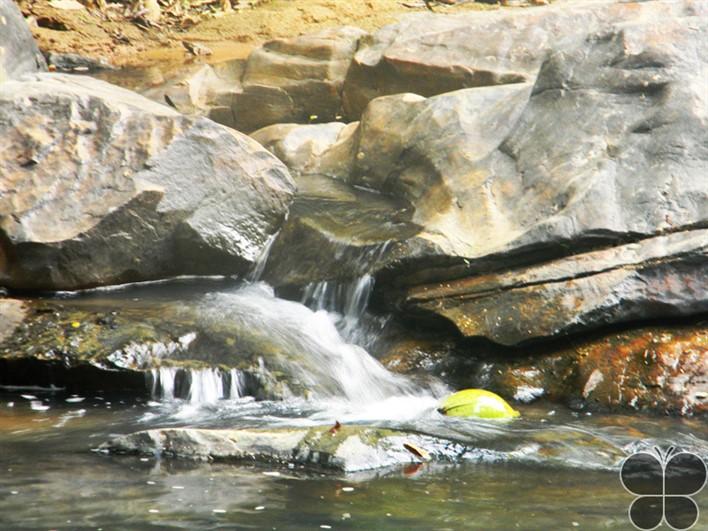 Achakanya Falls. Image source hikeezee.com