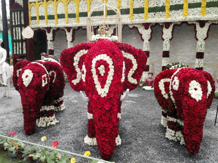 Dasara Procession, Lalbagh Flower show 2014, dasara elephants