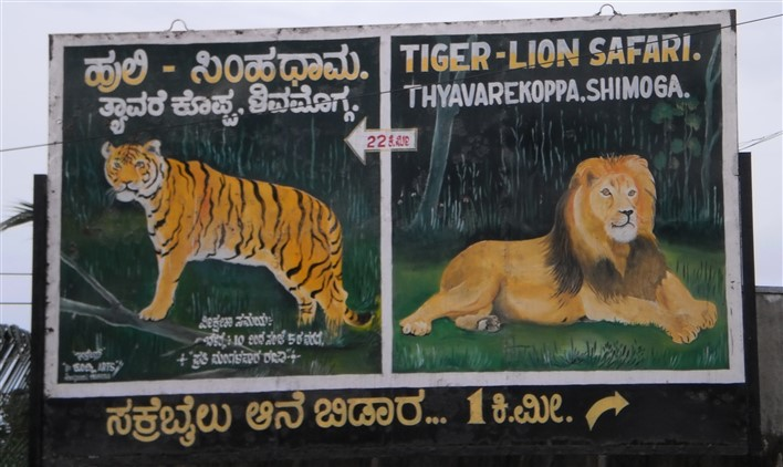 Tyavarekoppa Lion and Tiger Reserve, Shimoga. Photographer Chitra Sivakumar